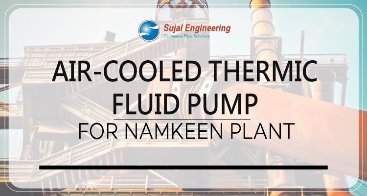Air Cooled Thermic Fluid Pump For Namkeen Plant