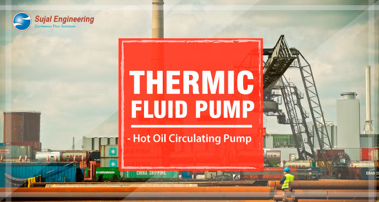 Thermic Fluid Pump Hot Oil Circulating Pump