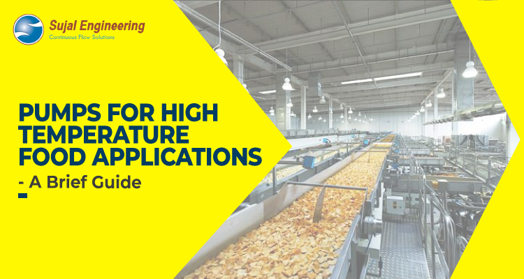 Pumps For High Temperature Food Application – A Brief Guide