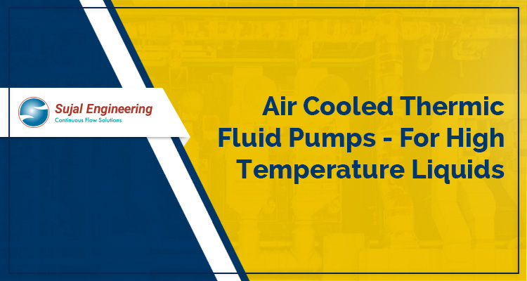 Air Cooled Thermic Fluid Pumps For High Temperature Liquids