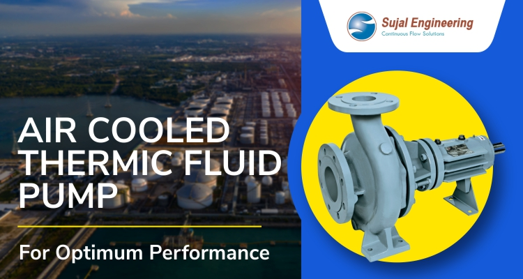 Air Cooled Thermic Fluid Pump For Optimum Performance