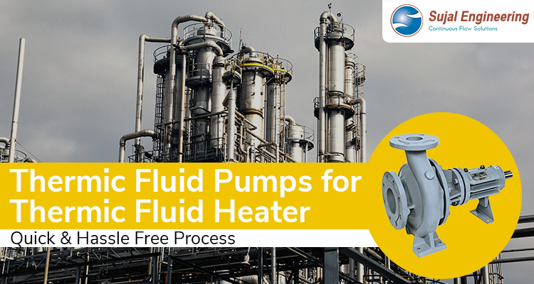 Thermic Fluid Pump for Thermic Fluid Heater – Quick Hassle Free Process
